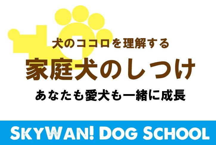 家庭犬のしつけ【マンション編】